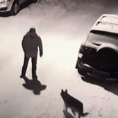 INSTANT KARMA Pijani Rus hteo da šutne psa i odmah se POKAJAO (VIDEO)
