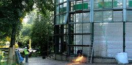 Zmiany w Parku Oliwskim! Znika Palmiarnia!