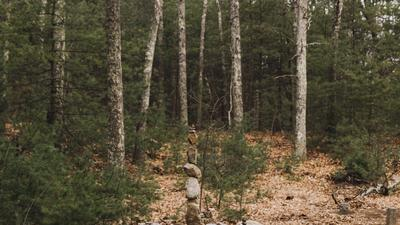 Lessons in Constructive Solitude From Thoreau