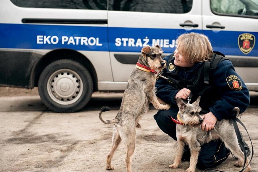Takie zwierzątka znaleźli strażnicy!