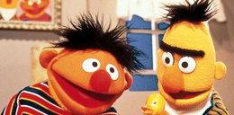 Bert i Ernie nie są gejami!