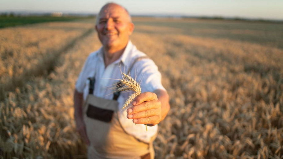 Moda na rolnictwo - jak zostać polskim farmerem