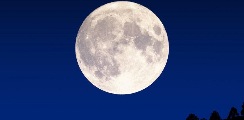 Będzie pierwsza prywatna wyprawa na Księżyc!