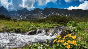Kontrola graniczna w Tatrach zostanie przywrócona
