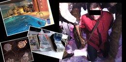 Bajeczne życie przestępców z Podlasia. Obrzydliwe bogactwo