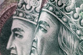 Uczestnik PPK może kontrolować stan swoich oszczędności