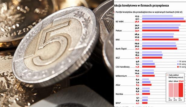 Akcja kredytowa w firmach przyspiesza, Shutter Stock