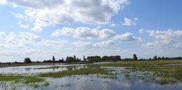 """Powódź drugi raz w ciągu miesiąca nęka rolników z Pacanowa. """"My tego nie wytrzymamy"""""""