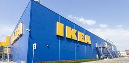 Nowa IKEA w Polsce. 1,5 tys. miejsc pracy