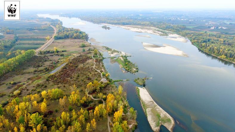 Wisła jako jedna z ostatnich wielkich rzek europejskich zachowała jeszcze wiele cech naturalnej rzeki
