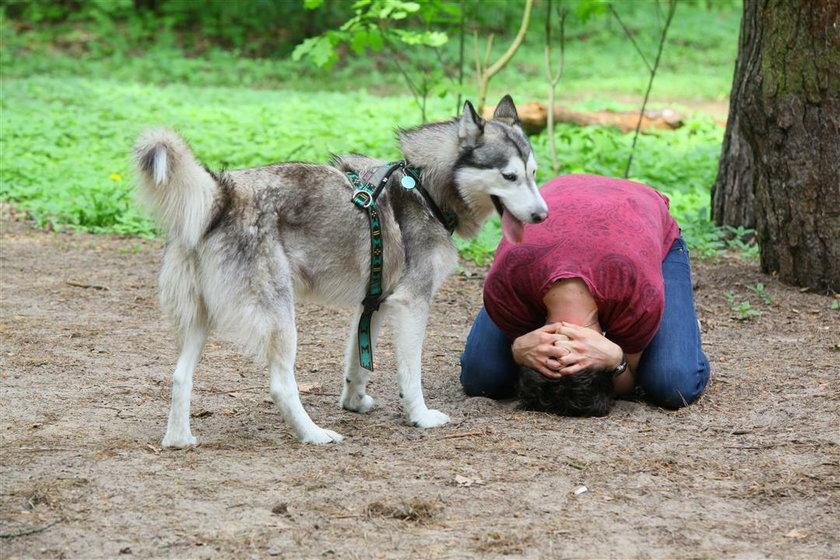 Tak obronisz się przed psem