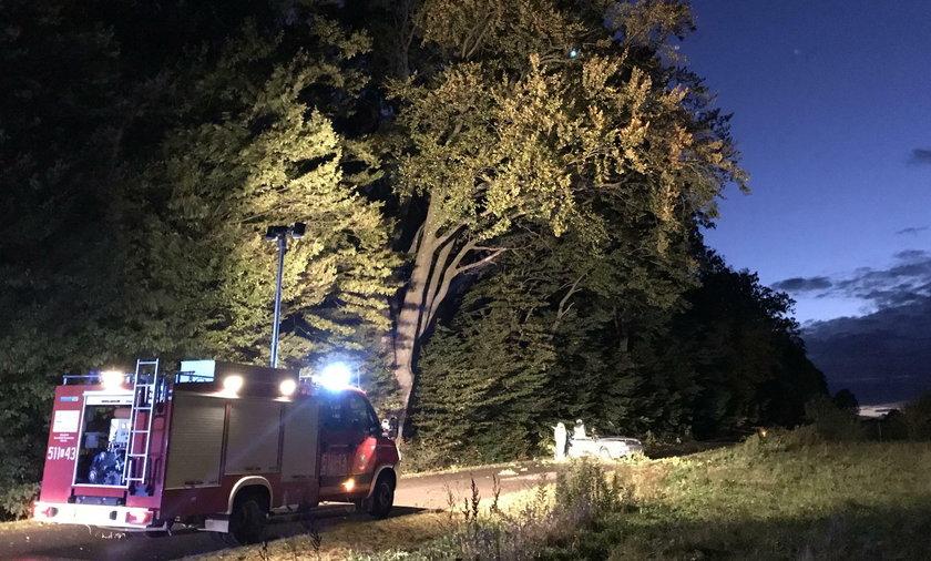 Do tragedii doszło w miejscu, w którym tydzień wcześniej drzewo zabiło kierowcę