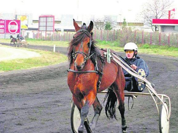Jokićeva ljubav prema konjima poznata je širom sveta