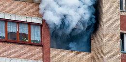 Tragiczny pożar w bloku w Stalowej Woli. Zginął emeryt
