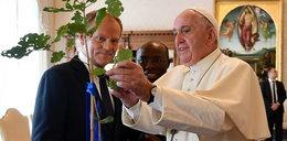 Tusk spotkał się z papieżem. Wyznał mu tajemnicę