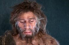 Neandertalac1 foto profimedia