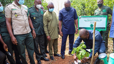 Akufo-Addo, others to plant 5 million trees today to 'Green' Ghana