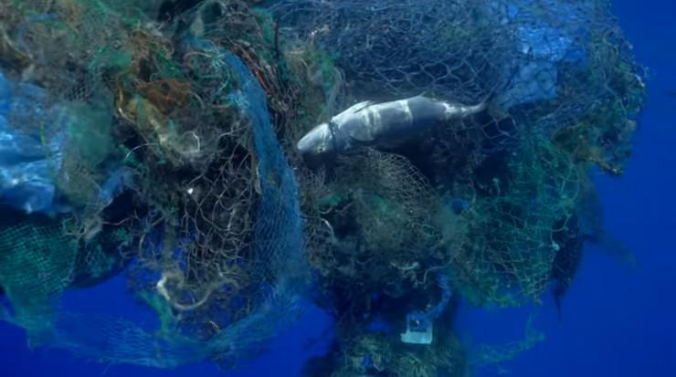 Okean smece