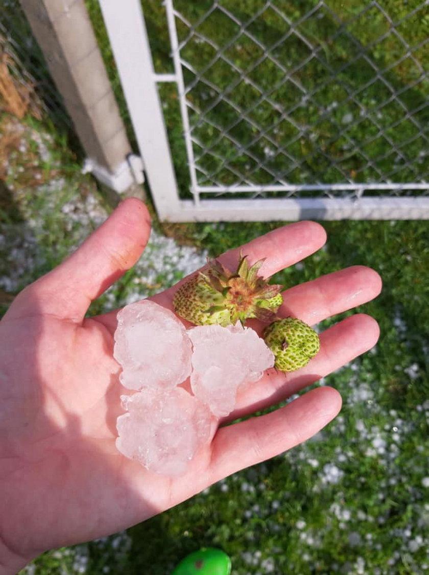 Armagedon pogodowy w Małopolsce. Strażacy mieli pełne ręce roboty