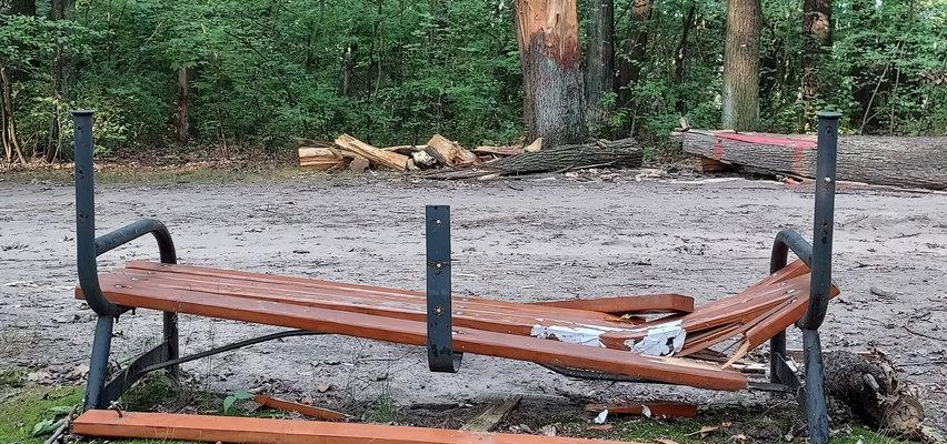 Łódź chce być zielonym miastem, a przez trzy miesiące urzędnicy nie potrafią naprawić jednej parkowej ławki połamanej podczas huraganu
