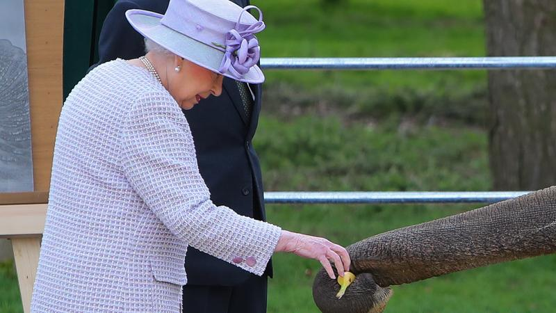 Królowa Elżbieta II w londyńskim ZOO