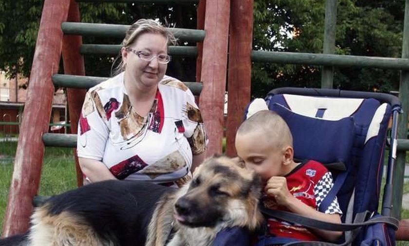 Pies uzdrowił Olka