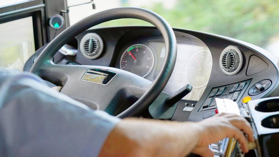 Kierowca (zdjęcie ilustracyjne)