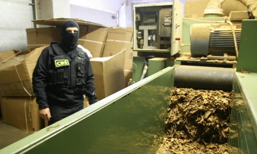 Policjanci odkryli krajalnię tytoniu