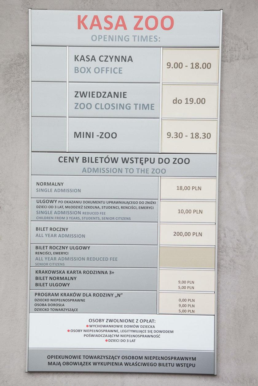 Odwiedź krakowskie zoo