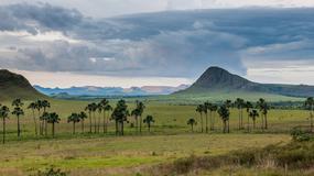 Parki narodowe ze stanu Goias mogą trafić na listę dziedzictwa w zagrożeniu