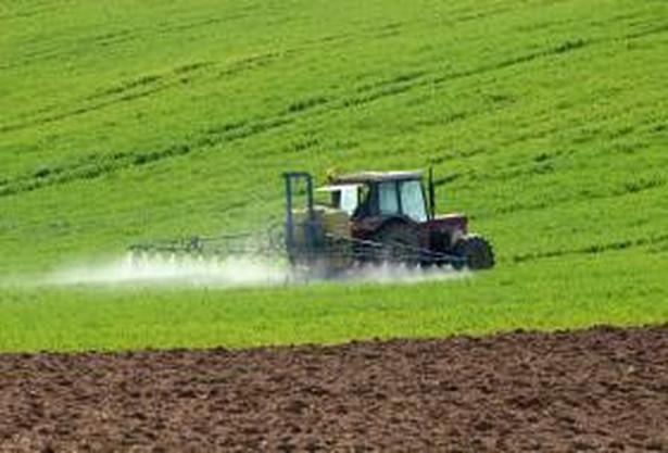Dziś wchodzi w życie obowiązek ubezpieczenia przez rolników przynajmniej 50 procent upraw.