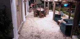 """Takiej agresji w """"Hotelu Paradise"""" jeszcze nie było. Uczestnicy bali się Kuby, który wpadł szał"""