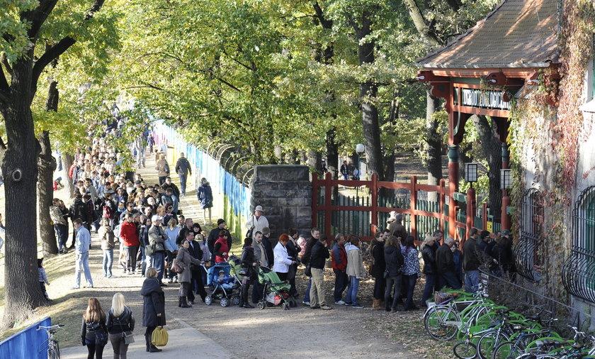 Kolejki do kas we Wrocławskim zoo