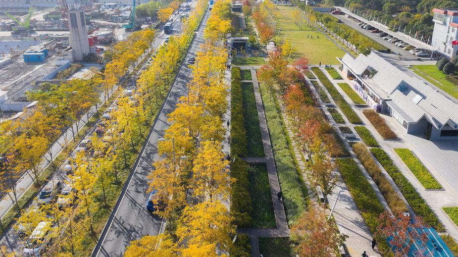 Lotnisko zmieniło się w park linearny o długości niemal 2 kilometrów