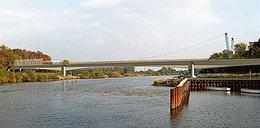 Nietoperze  zatrzymały most Wschodni