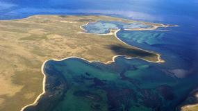 Brytyjczycy obawiają się argentyńskiej inwazji na sporne Falklandy (Malwiny)