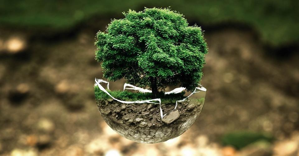 Die fünf coolsten Methoden die Umwelt zu schonen