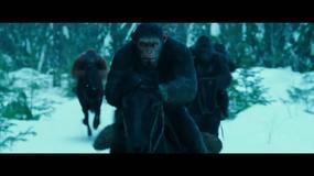 """""""Wojna o planetę małp"""": nowy zwiastun"""