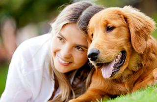 Jak podróżować z psem? Tanimi liniami będzie ciężko