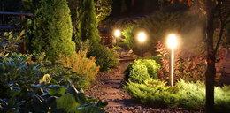 W ten sposób wprowadzisz do swojego ogrodu romantyczny nastrój! Mamy na to sposób!