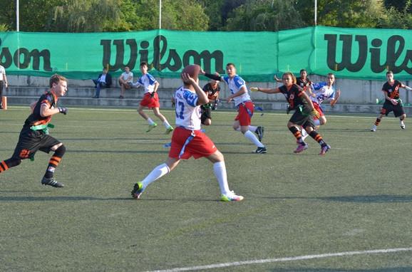 Fleg fudbal