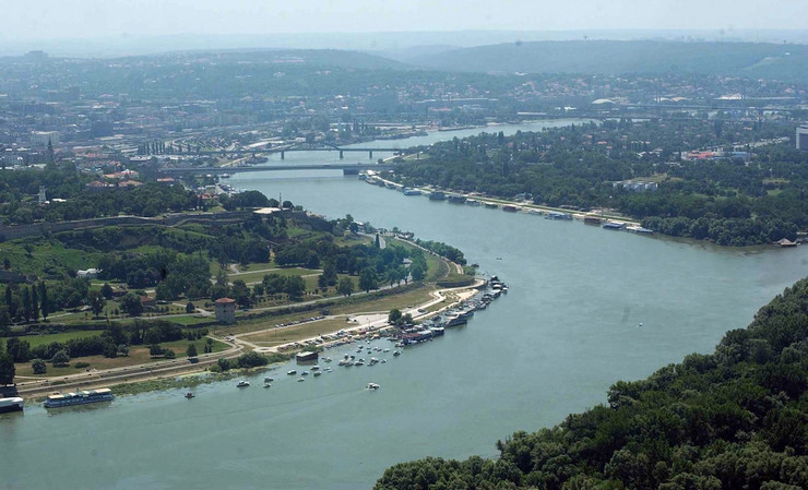 20081210 blic dalibor danilovic  Di001550816 preview Beograd