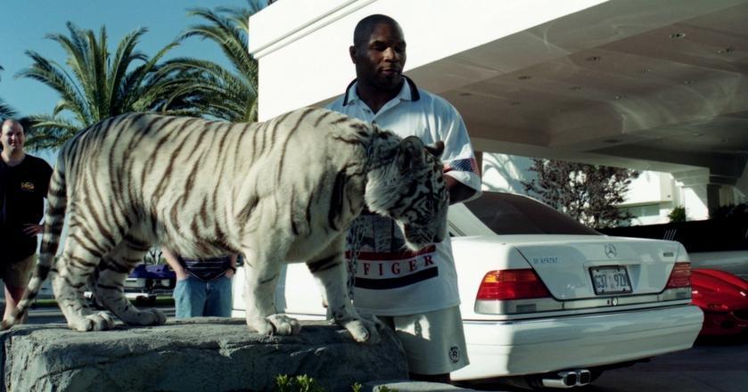 Rok 1989. Mike Tyson pozuje do zdjęcia ze swoim białym tygrysem