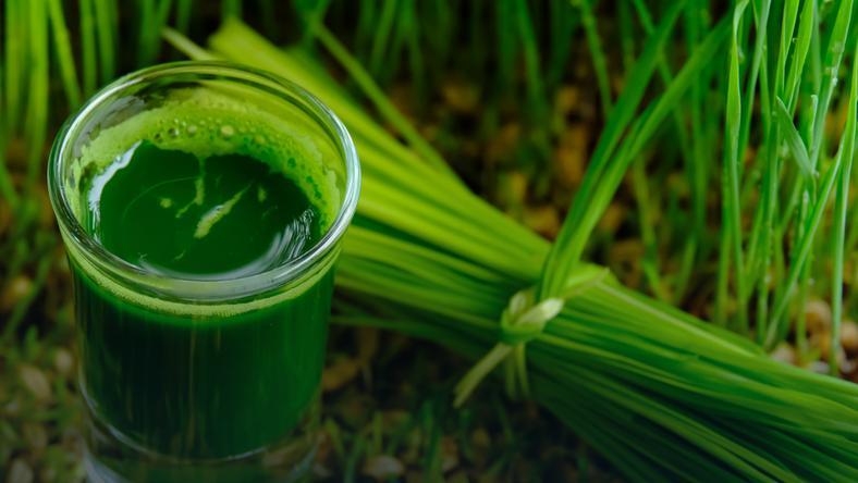 zielony jęczmień w tabletkach czy w proszku