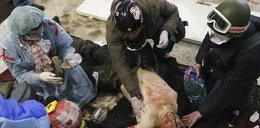 Egzekucje na ulicach Kijowa. ZDJĘCIA +18 LAT