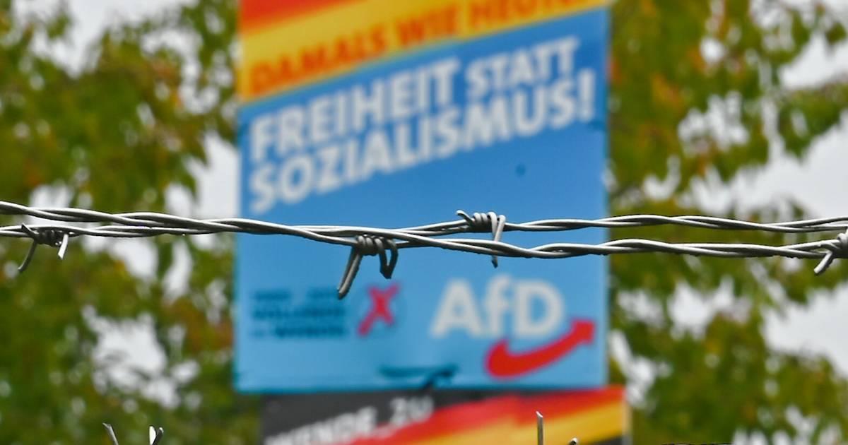 """Antisemitismus-Beauftragter: """"AfD hat sehr viele judenfeindliche Positionen"""""""