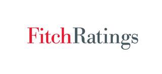 Fitch: Polskie banki neagtywnie odczują umocnienie franka