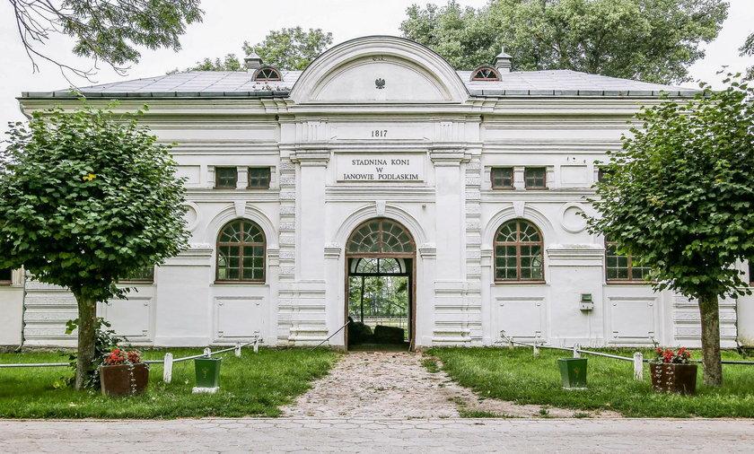 Dramat koni w Janowie Podlaskim