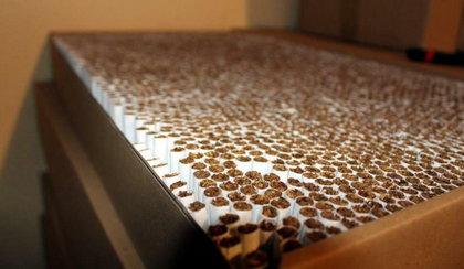 Ukraińcy robili papierosy w betoniarce