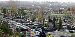 Miasto rozbuduje Cmentarz Łostowicki